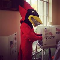 Cy Voted