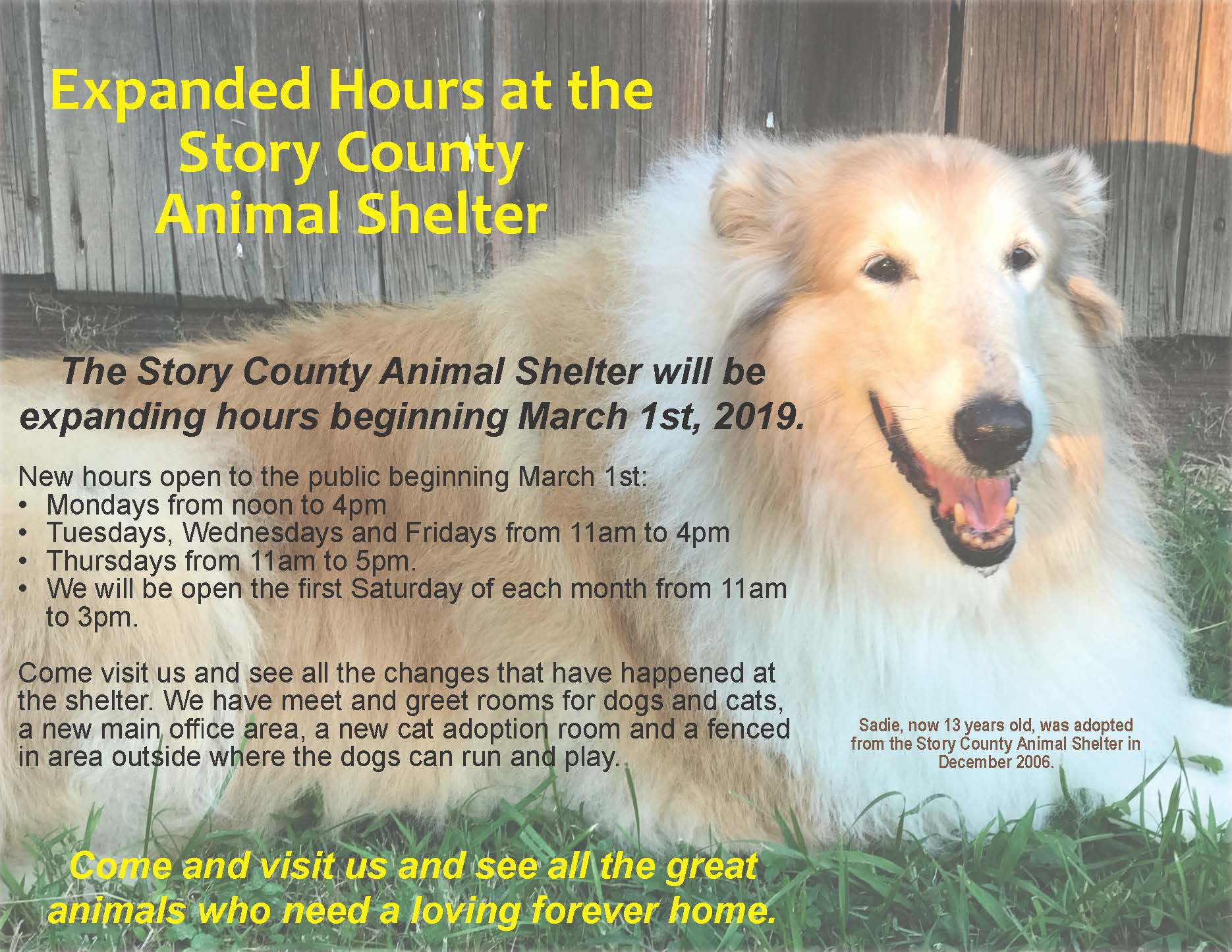 Extended Hours at Animal Shelter