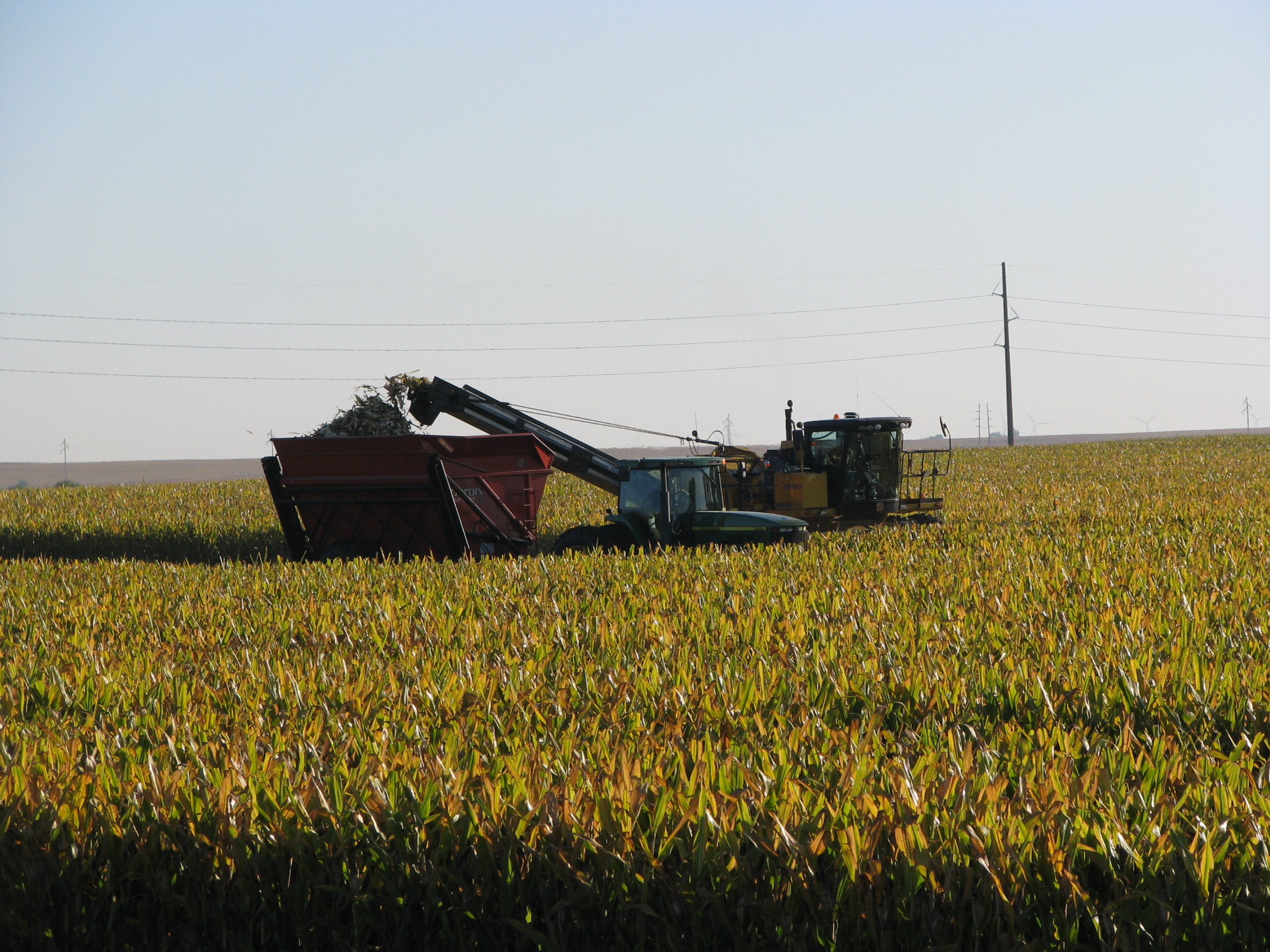 Combine and tractor harvesting corn.